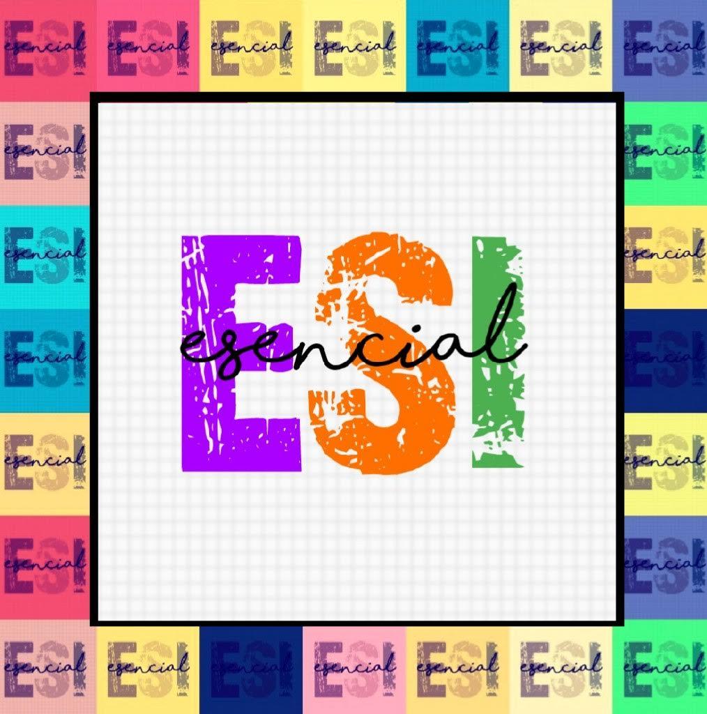Talleres de ESI